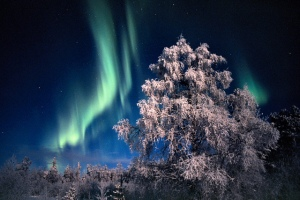Beautiful colours of the Northern Lights in Lapland