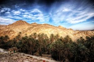 Tunisia oasis ecotourism