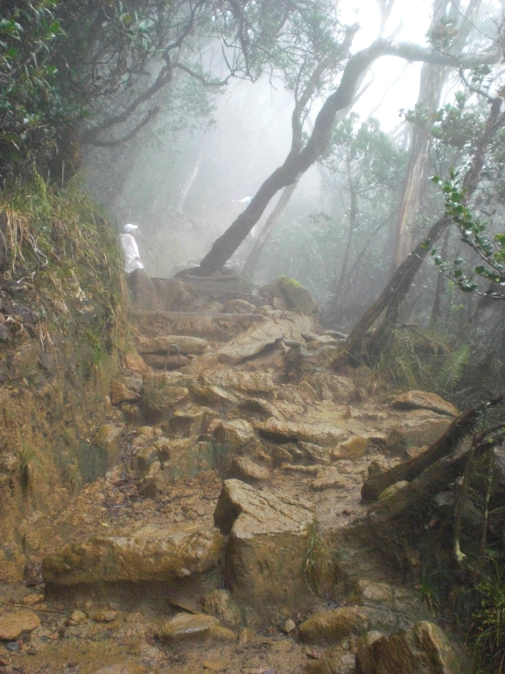 The rocky climbing path of Mt. Kinabalu requires hiking boots