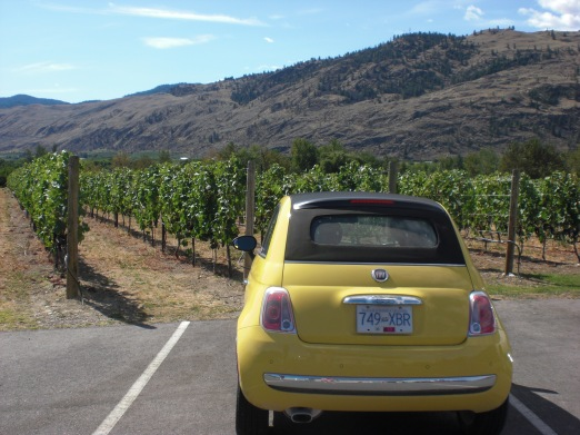 Fiat 500 in Wine Country
