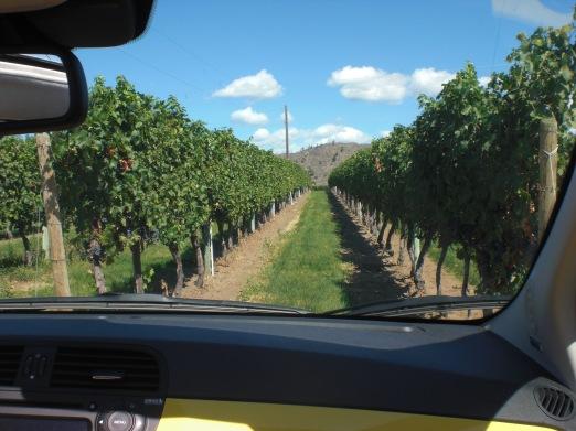 Desert Hills Winery Oliver BC